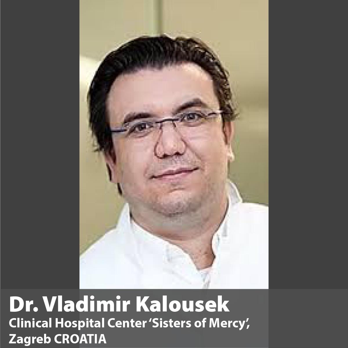 Mentor Dr. Vladimir Kalousek